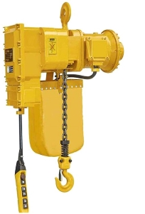 Hot Sale 1ton 2ton 5ton Explosion Proof or Anti-Explosion 380V Three Phase Electric Ring Chain Trolley Hoist for Industry