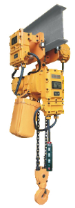Different Capacities of Explosion-proof type Electric Chain Hoists made in china