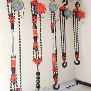 Quote to DHP electric chain hoist 5 T and 10 Tons